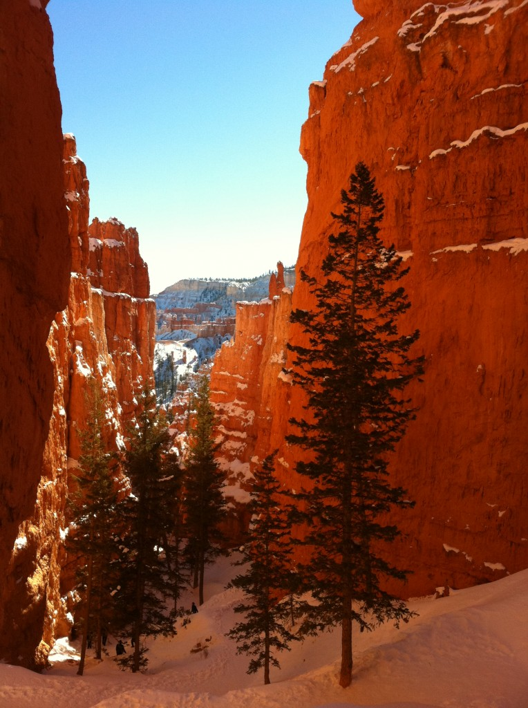 geologic beauty of Bryce Canyon in winter